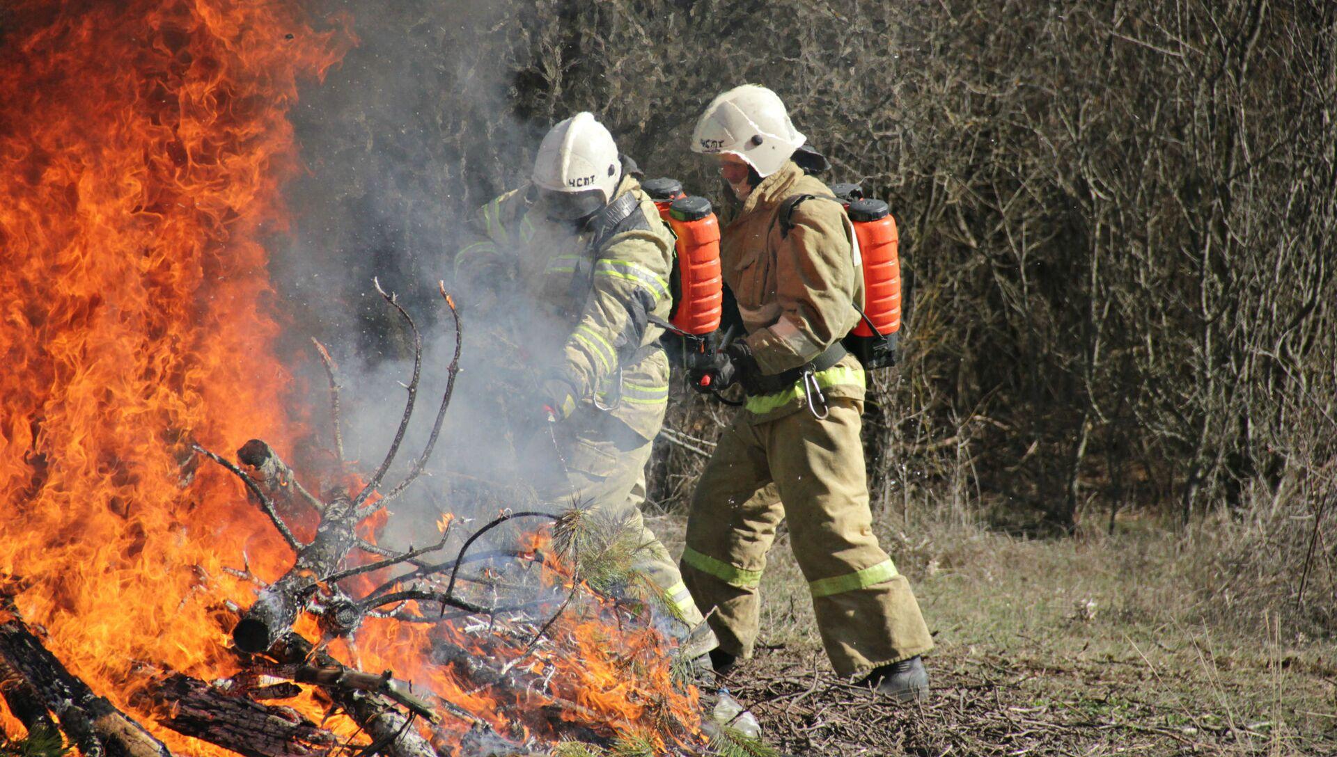 В Крыму прошли учения МЧС по тушению лесных пожаров - РИА Новости, 1920, 26.07.2021