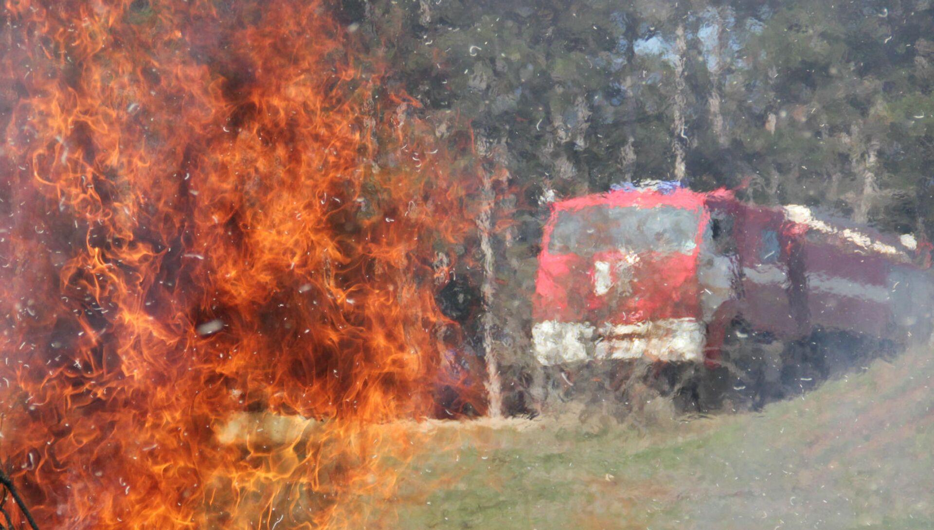 В Крыму прошли учения МЧС по тушению лесных пожаров - РИА Новости, 1920, 01.08.2021