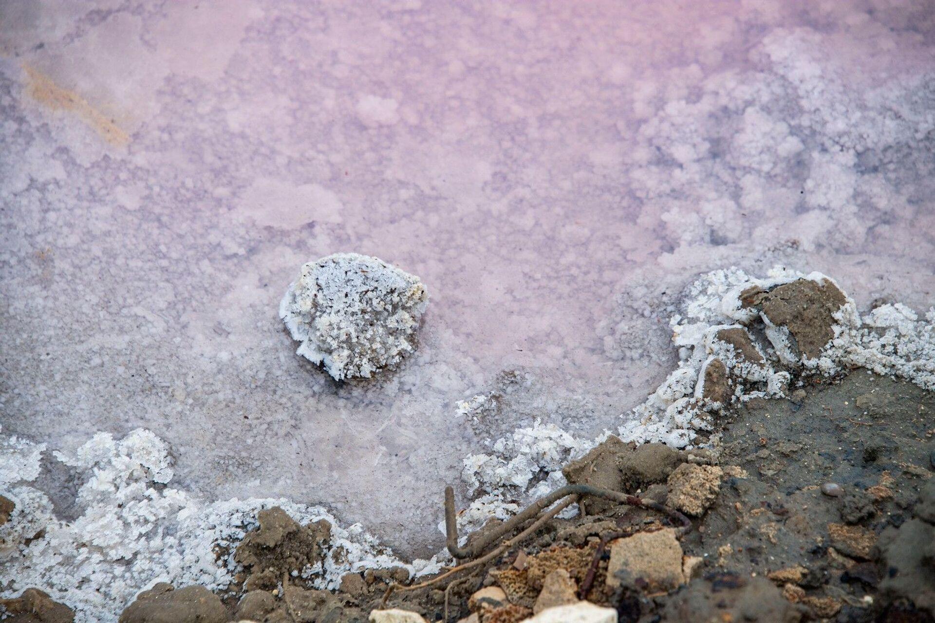 Сакское лечебное озеро иногда приобретает розоватый оттенок и-за микробиологических процессов в рапе - РИА Новости, 1920, 11.08.2021