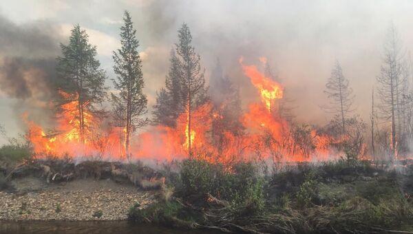 Лесной пожар на Чукотке