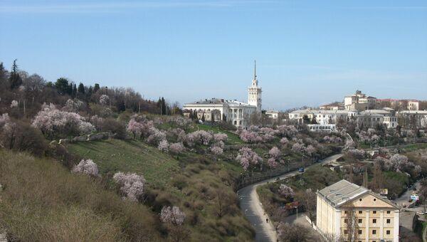 Цветение миндаля на склоне Исторического бульвара в Севастополе. Архивное фото